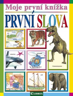 mpk-slova12-cov-cz.indd